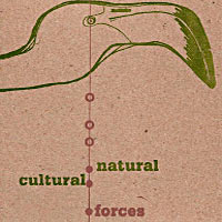 2007. Natural/Cultural Forces, Engine
