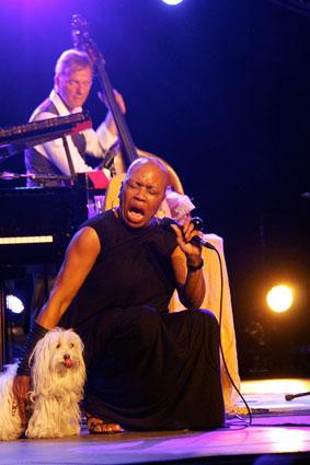 Dee Dee Bridgewater et le New Orleans Seven d'Irvin Mayfields, Festival d'Albertville 2015, et son chien, un habitué de la scène © Pascal Kober